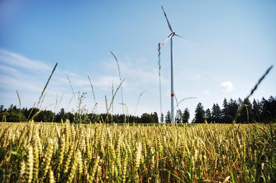 Naturstrom. Wissenswerte Infos zum sauberen Strom